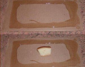 Нанесенный клей на картон для ловушки мышей